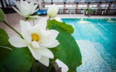 Spa 16+ in the center of St Petersburg | Taleon Imperial Hotel | Russia